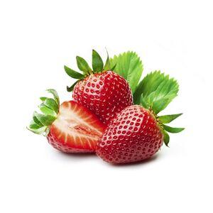 Ovocná náplň 60% - gel jahodový 6 kg - Zeelandia